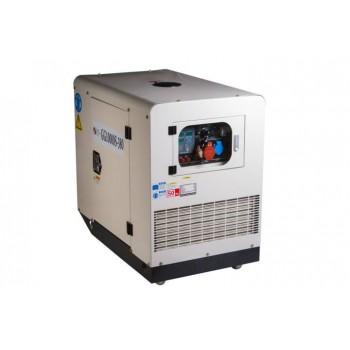Генератор газовый REG GG10000S